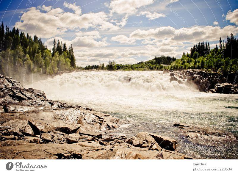 Stromschnellen Umwelt Natur Landschaft Wasser Himmel Wolken Sonnenlicht Sommer Schönes Wetter Baum Wald Flussufer Wasserfall wild blau grün Bewegung Norwegen
