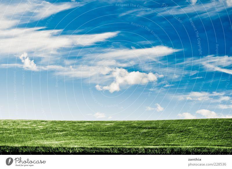 Horizont Umwelt Natur Landschaft Pflanze Himmel Wolken Sommer Klima Wetter Schönes Wetter Wind Gras Kornfeld Getreide Feld Hügel blau grün weiß Norwegen