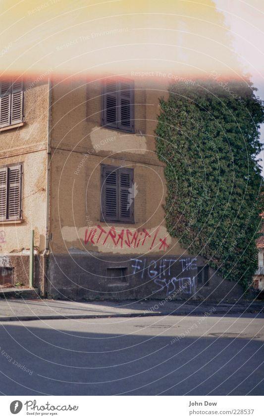 Fight the System alt Haus Straße Fenster Architektur Graffiti Gebäude Fassade wild Sträucher Bauwerk Vergänglichkeit Asphalt verfallen Vergangenheit analog
