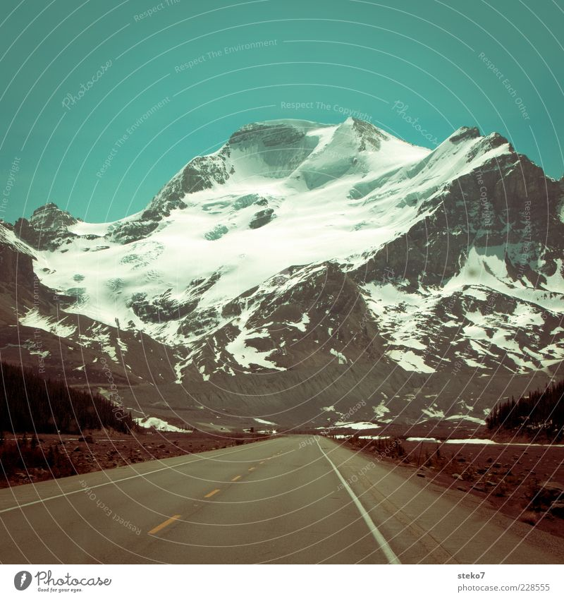 Tunnelbauer gesucht Landschaft Wolkenloser Himmel Gipfel Schneebedeckte Gipfel Gletscher Straße Autobahn Einsamkeit Ferne Kanada Icefield Parkway unberührt