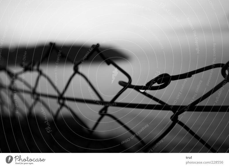 Morgentau Wasser Wassertropfen Himmel Sommer Küste Strand Bucht Maschendrahtzaun Ferne Schwarzweißfoto Außenaufnahme Detailaufnahme Menschenleer Morgendämmerung