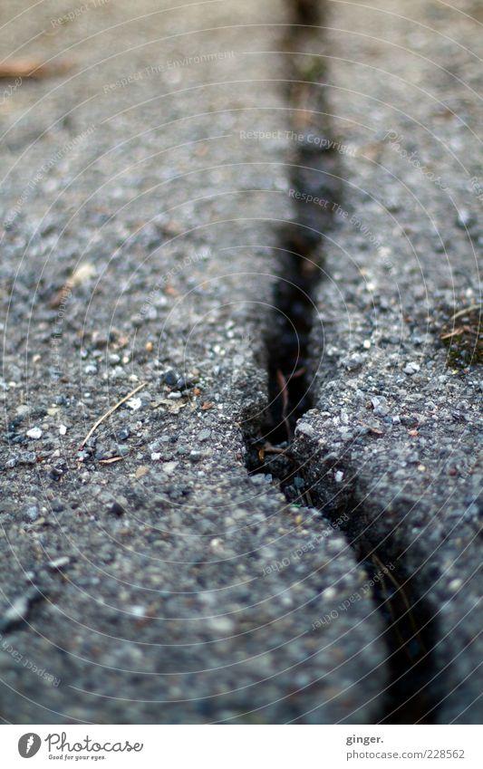 Riss in der Welt Umwelt Winter Klima Eis Frost Straße kaputt Asphalt Frostschaden gerissen Schaden Oberfläche grau unregelmäßig Froschperspektive