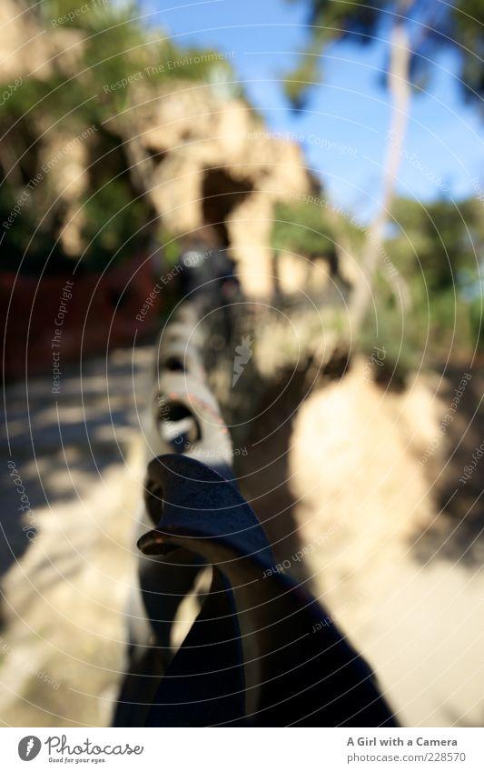 Park Güell - entlang des Weges schön Sand Stein Metall Idylle Schönes Wetter Geländer Zaun Spirale Sehenswürdigkeit Wolkenloser Himmel Identität Barcelona