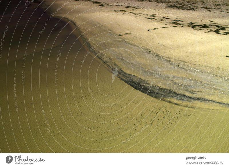 Binzer Nacht Umwelt Natur Landschaft Sand Wasser Küste Ostsee Meer Insel Gefühle Stimmung Farbfoto Gedeckte Farben Außenaufnahme Menschenleer Textfreiraum links