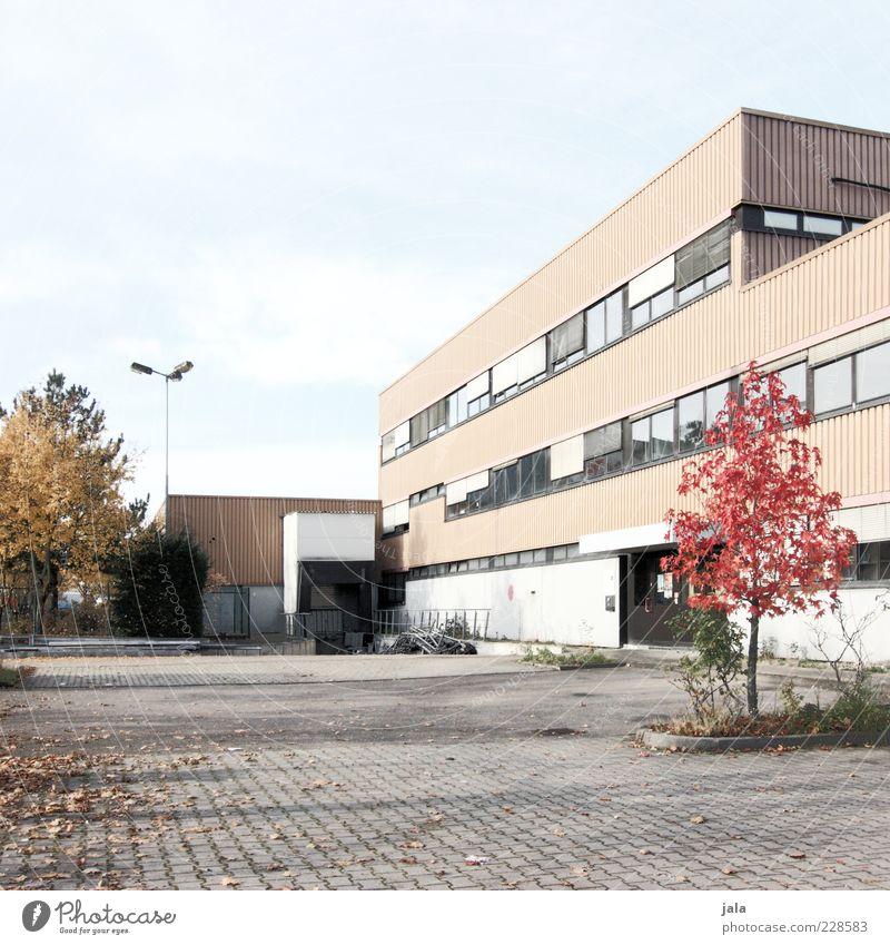 immobilieninvestment Himmel Herbst Pflanze Baum Haus Industrieanlage Fabrik Platz Bauwerk Gebäude Architektur Mauer Wand Fassade Fenster Tür trist Farbfoto