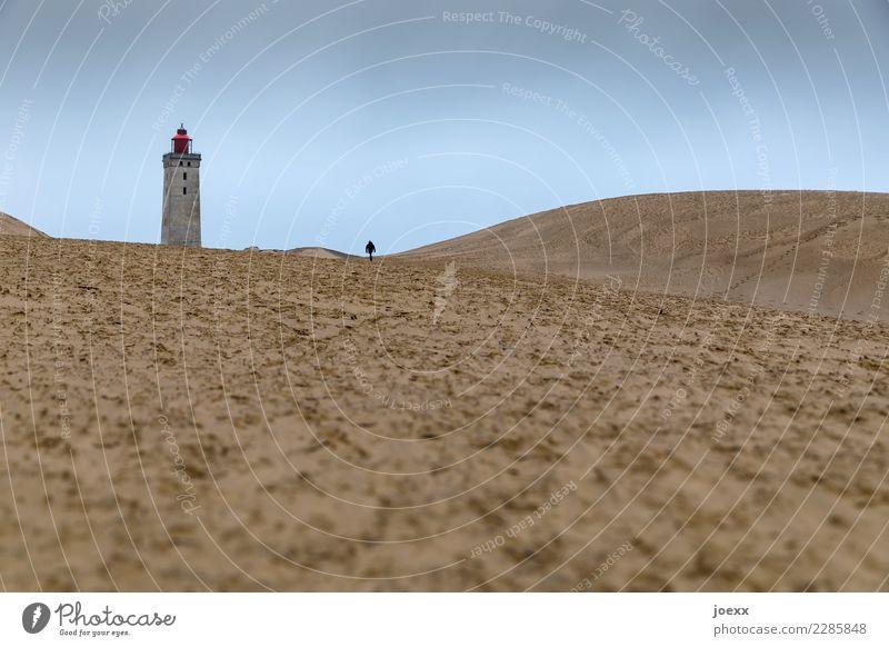 Einsamer Mensch geht auf Leuchtturm in weiter Dünenlandschaft zu. Ziel Zielstrebig Dänemark historisch Wege & Pfade alt Einsamkeit Sehenswürdigkeit Küste