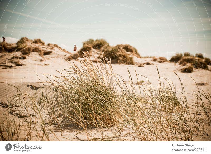 Strandgang Mensch Himmel Ferien & Urlaub & Reisen Sommer ruhig Einsamkeit Leben Gras Sand Küste Zufriedenheit Freizeit & Hobby frei Tourismus natürlich