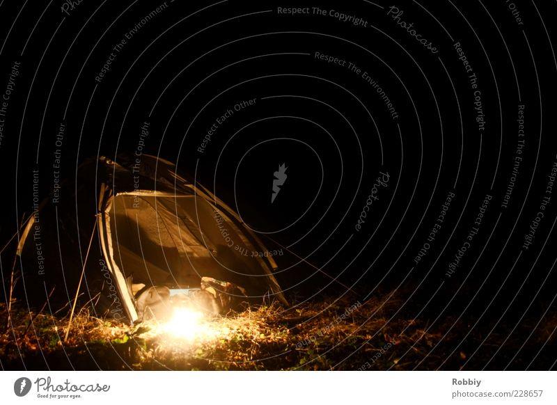 Zelten im Dunkelwald Natur Ferien & Urlaub & Reisen ruhig Einsamkeit Ferne Erholung dunkel Umwelt Gras Lampe Freizeit & Hobby Abenteuer frei entdecken Camping