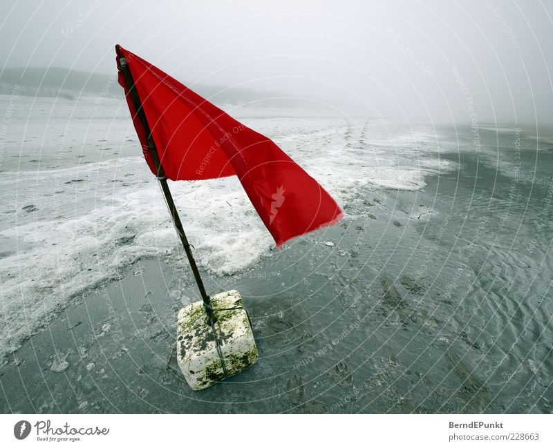 Gestrandet! Wasser rot Strand Winter Einsamkeit Ferne Sand Küste Wellen Wind Nebel Insel bedrohlich einzigartig Fahne Nordsee