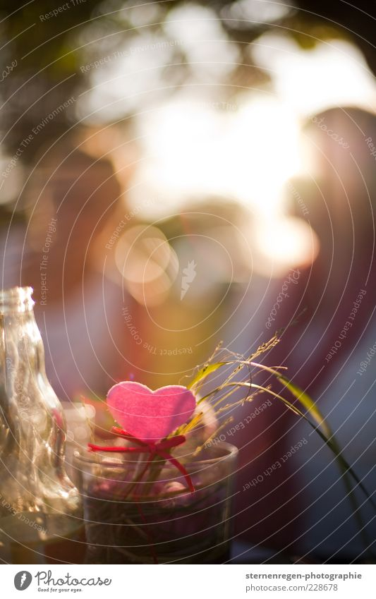 herzchen. Freude Garten Glück träumen Zufriedenheit Glas Herz rosa glänzend Fröhlichkeit Romantik leuchten Dekoration & Verzierung Lächeln genießen Halm