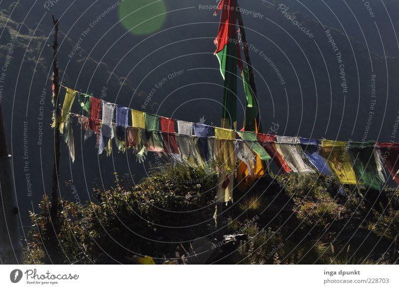 Windpferd Lungta harmonisch Erholung ruhig Freiheit Expedition Nepal Buddhismus Religion & Glaube Gebetsfahnen Tibet Sonnenlicht Zeichen Asien grau Glück