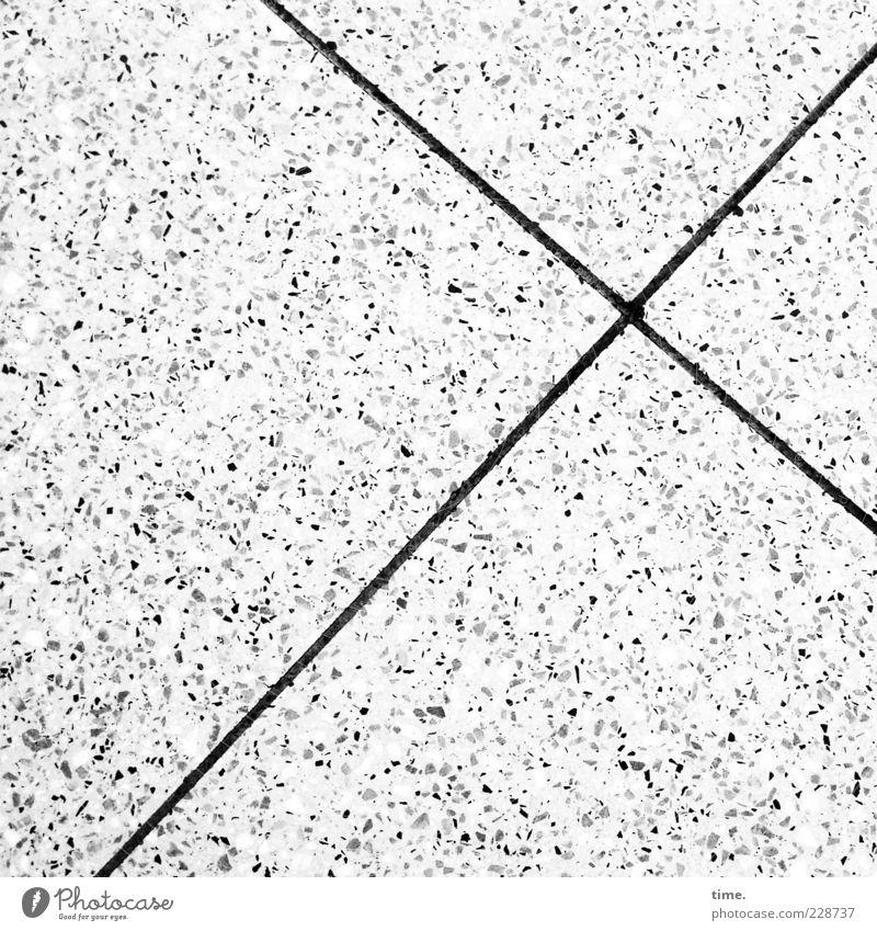 Knutschende Fische Stein Beton Kreuz Linie hell Einsamkeit Genauigkeit Ordnung Symmetrie Betonplatte Fuge Furche scheckig Boden Bodenbelag Bodenplatten Kreuzung