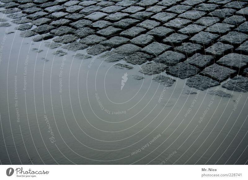 purple rain Wasser Straße kalt Umwelt grau Wege & Pfade Regen Wetter nass Klima feucht Kopfsteinpflaster Straßenbelag Fuge Pfütze Pflastersteine