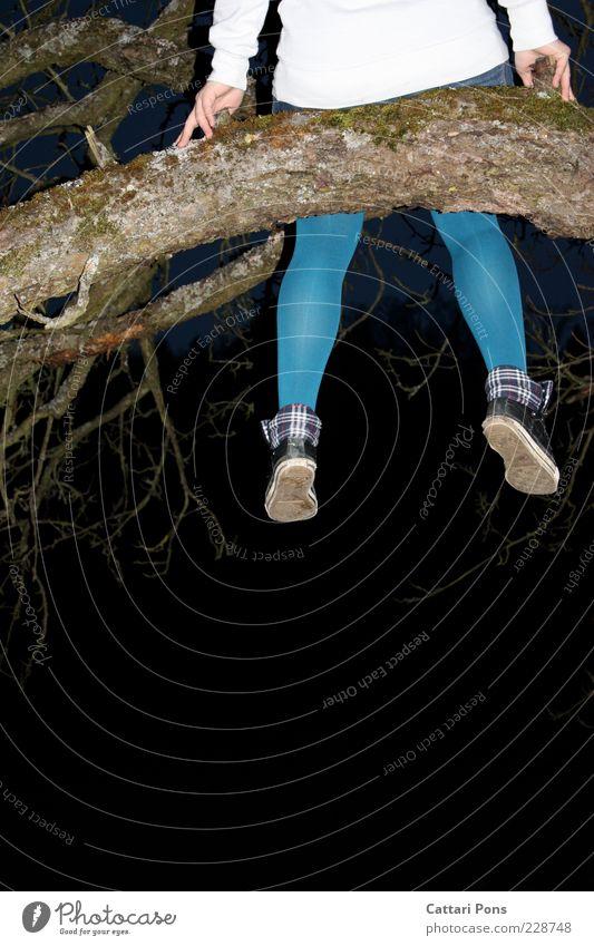 at the top Mensch feminin Junge Frau Jugendliche Beine 1 Natur Baum festhalten sitzen blau weiß Hand Ast Unterschenkel Strumpfhose Nachtaufnahme Rückansicht