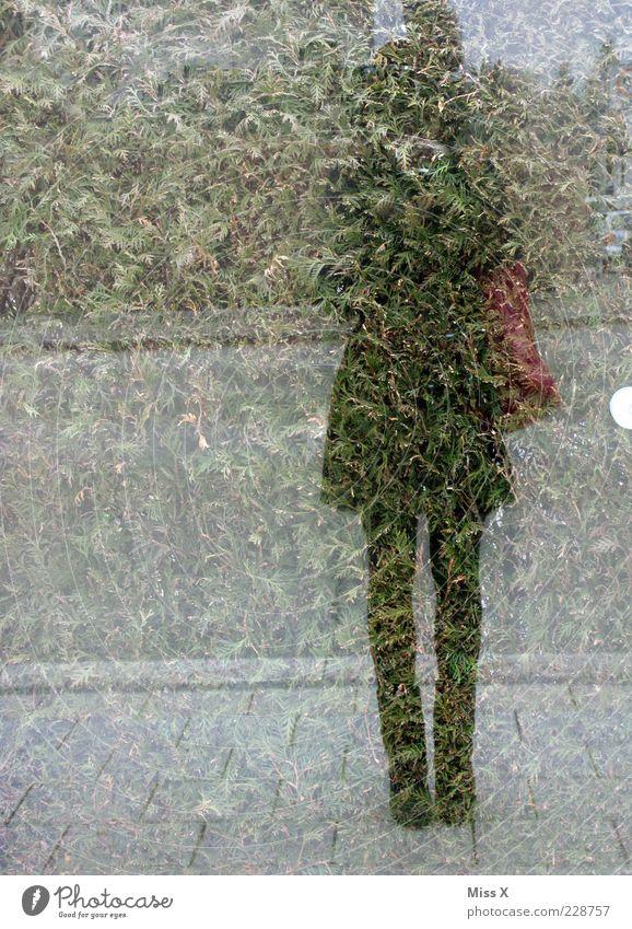 Mirroring Mensch Jugendliche Erwachsene Fenster außergewöhnlich 18-30 Jahre Fensterscheibe anonym Junge Frau Fotografieren Selbstportrait Spiegelbild