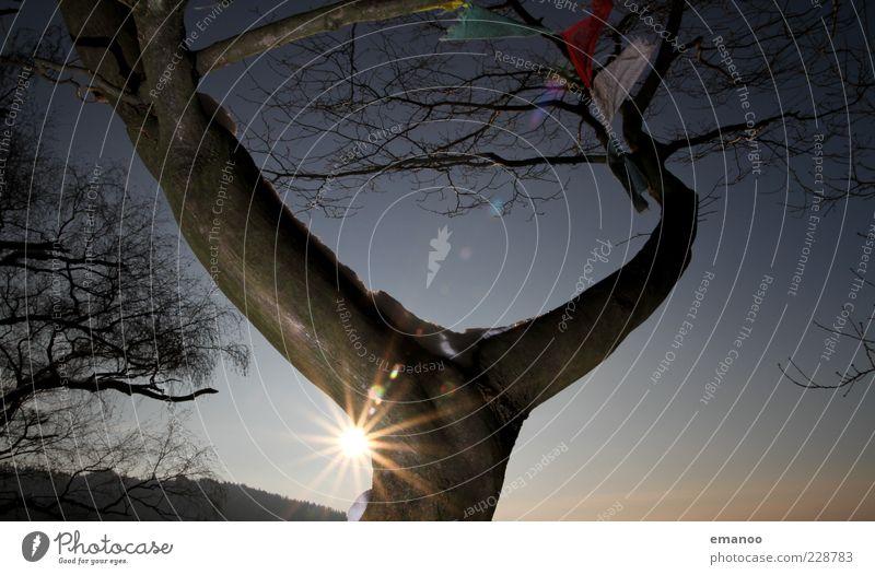Y 2 Natur Landschaft Pflanze Himmel Sonne Winter Klima Schönes Wetter Baum Zeichen außergewöhnlich blau Tibet Fahne Gebetsfahnen Sonnenenergie Blendenfleck