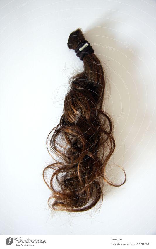 Ab mit dem Zopf! Haare & Frisuren brünett langhaarig Locken ästhetisch authentisch braun weiß Trennung Vergangenheit Wandel & Veränderung Haargummi