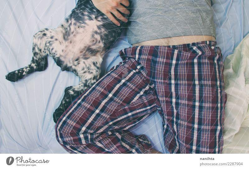Mann und Hundebäuche Lifestyle Stil Wellness Wohlgefühl Erholung Haus Bett Schlafzimmer Mensch maskulin Erwachsene Leben Bauch 1 30-45 Jahre Nachthemd Tier