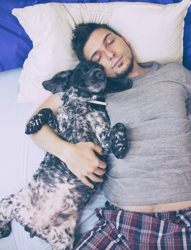 Junger Mann, der mit seinem Hund schläft Mensch Jugendliche schön Erholung Tier Erwachsene Lifestyle Liebe Zusammensein Freundschaft maskulin liegen authentisch