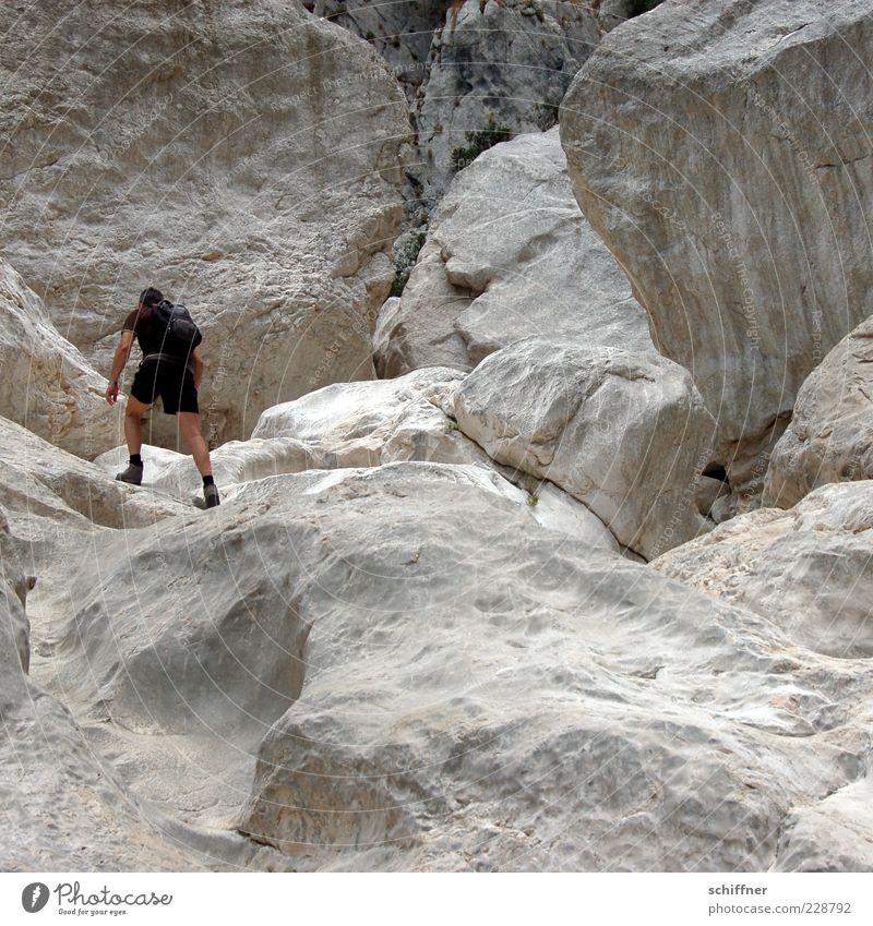Der Maitre klettert Mensch Mann Ferien & Urlaub & Reisen Erwachsene Berge u. Gebirge Felsen maskulin wandern Tourismus Ausflug Abenteuer Klettern sportlich Schlucht Felsspalten Felswand
