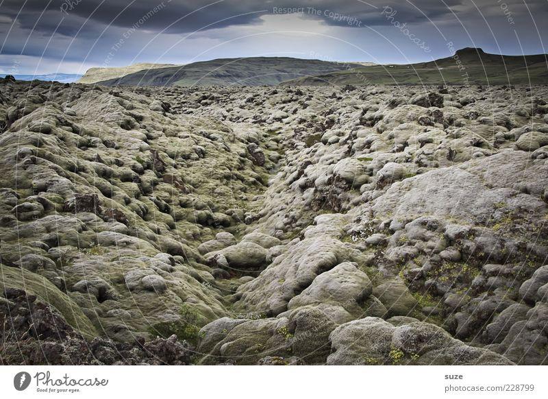 Glotzen & Kleckern Umwelt Natur Landschaft Urelemente Himmel Wolken Horizont Klima Moos Hügel außergewöhnlich dunkel fantastisch Island Lava Gesteinsformationen
