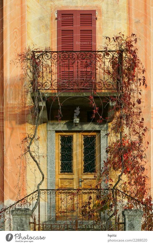 Herbstfassade alt Farbe Wärme Leben gelb Wand Glück Mauer braun orange rosa Fassade Stimmung leuchten ästhetisch