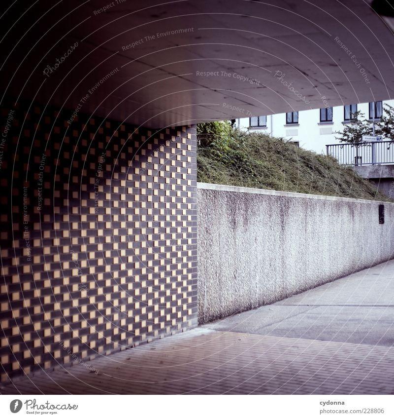 Linienbeziehungen Pflanze ruhig Einsamkeit Leben Wand Architektur Stil Wege & Pfade Mauer laufen ästhetisch Lifestyle Ecke trist einzigartig