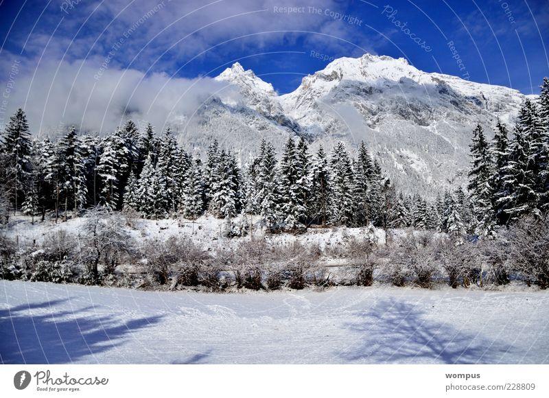 Augenweide Natur Landschaft Pflanze Himmel Wolken Schönes Wetter Park Wiese Feld Wald Hügel Felsen Alpen Berge u. Gebirge Gipfel Schneebedeckte Gipfel blau