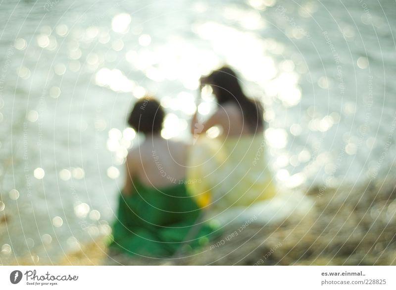 schwanensee. Mensch schön Sommer ruhig feminin sprechen Wärme Denken Freundschaft Zusammensein elegant sitzen glänzend Hoffnung außergewöhnlich leuchten