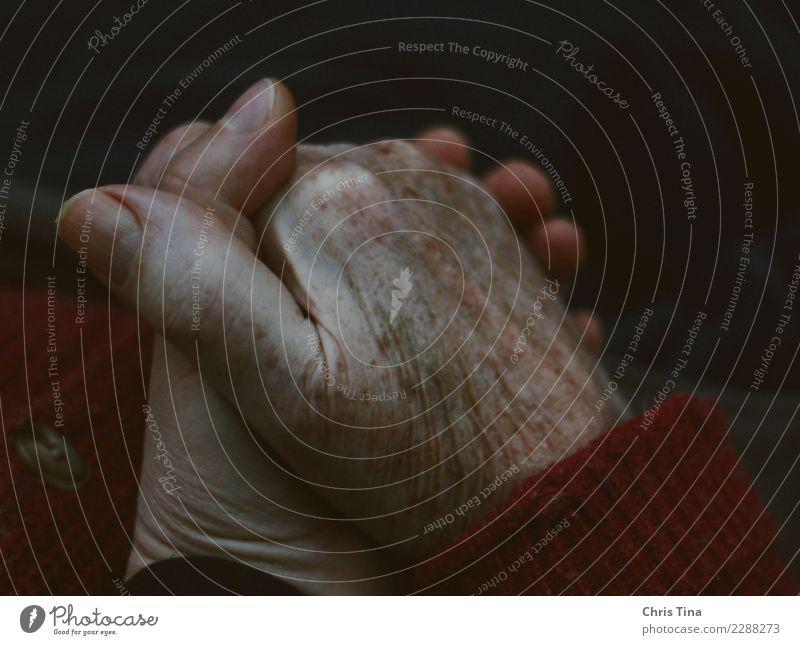 Dankbarkeit Mensch Hand 2 60 und älter Senior alt berühren festhalten Liebe einfach Glück Wärme Gefühle Zufriedenheit Vertrauen Geborgenheit Zusammensein