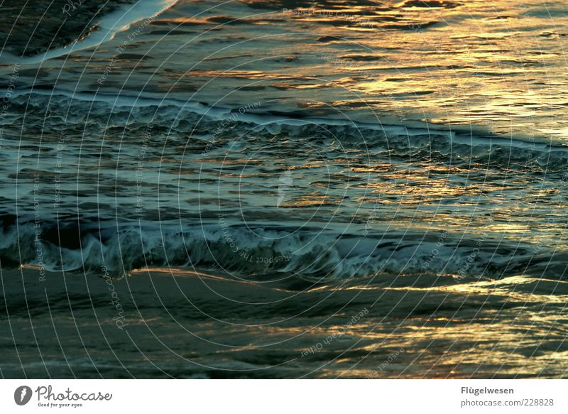Verkehrte Welt Ferien & Urlaub & Reisen Tourismus Ausflug Sommer Sommerurlaub Meer Wellen exotisch Wasser Wellengang Wellenkamm Farbfoto Außenaufnahme Dämmerung