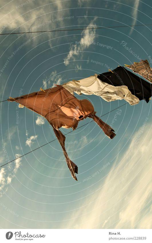 Wäsche im Wind Himmel blau Sommer Wolken Wetter Wind frisch Bekleidung Sauberkeit Schönes Wetter hängen Wäsche trocknen Wäscheleine Froschperspektive Bluse