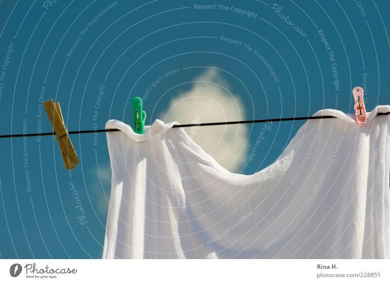 Wäsche und Wolke Himmel Wolken Sommer Klima Wetter Schönes Wetter hängen Duft Sauberkeit Wärme blau weiß Reinlichkeit Reinheit Wäscheleine Wäscheklammern