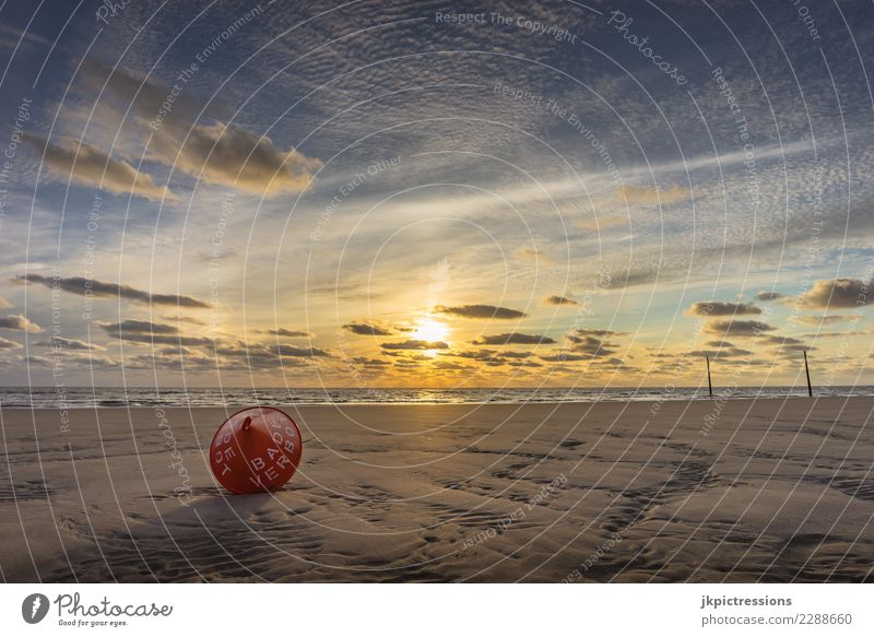Sankt Peter Ording Sonnenuntergang Himmel Abenddämmerung Meer Landschaft Natur Licht Wasser Wolken Sand verträumt Ferne Unendlichkeit Holzpfahl Deutschland