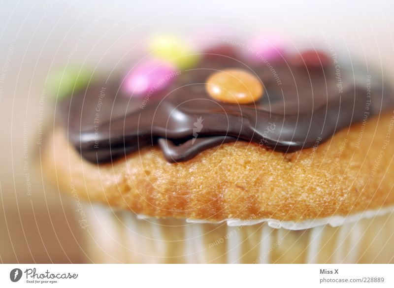 Muffin Lebensmittel Teigwaren Backwaren Kuchen Dessert Süßwaren Schokolade Ernährung klein lecker rund saftig süß Schokolinsen verziert Dekoration & Verzierung