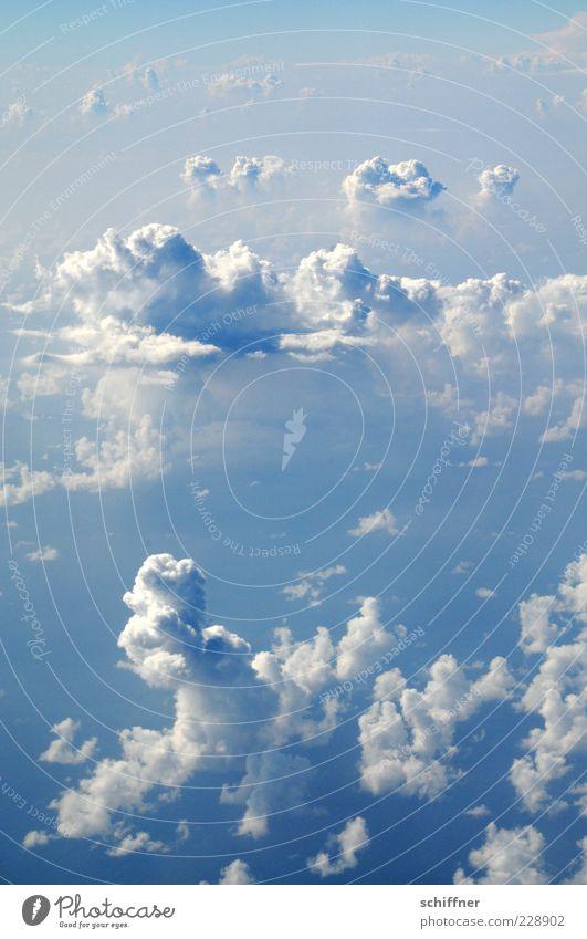 Cumulus mediocris Himmel blau weiß Sonne Wolken Ferne Freiheit Gefühle Luft Wetter Horizont ästhetisch Klima außergewöhnlich Urelemente Unendlichkeit