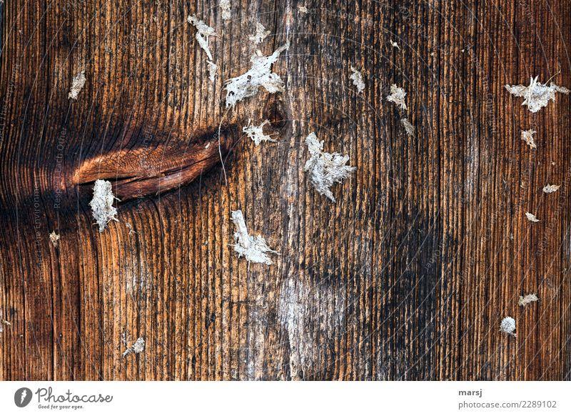 So ein Mist aber auch Misthaufen Maserung Astloch Holz dunkel authentisch Ekel gruselig einzigartig natürlich Enttäuschung Einsamkeit Tabubruch
