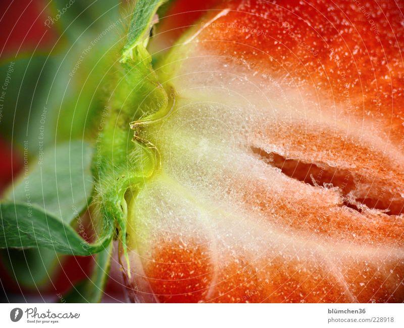 Aber bitte mit Sahne rot Gesundheit Frucht Lebensmittel frisch Ernährung Dekoration & Verzierung süß Teilung lecker Bioprodukte Vitamin saftig Erdbeeren Dessert