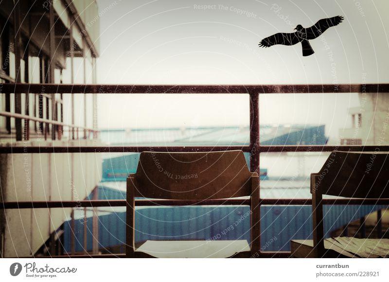 Am Containerhafen für Akademiker ruhig Einsamkeit Ferne Vogel Horizont Wandel & Veränderung Stuhl Idylle Geländer Scheibe Stuhllehne Menschenleer Fensterplatz