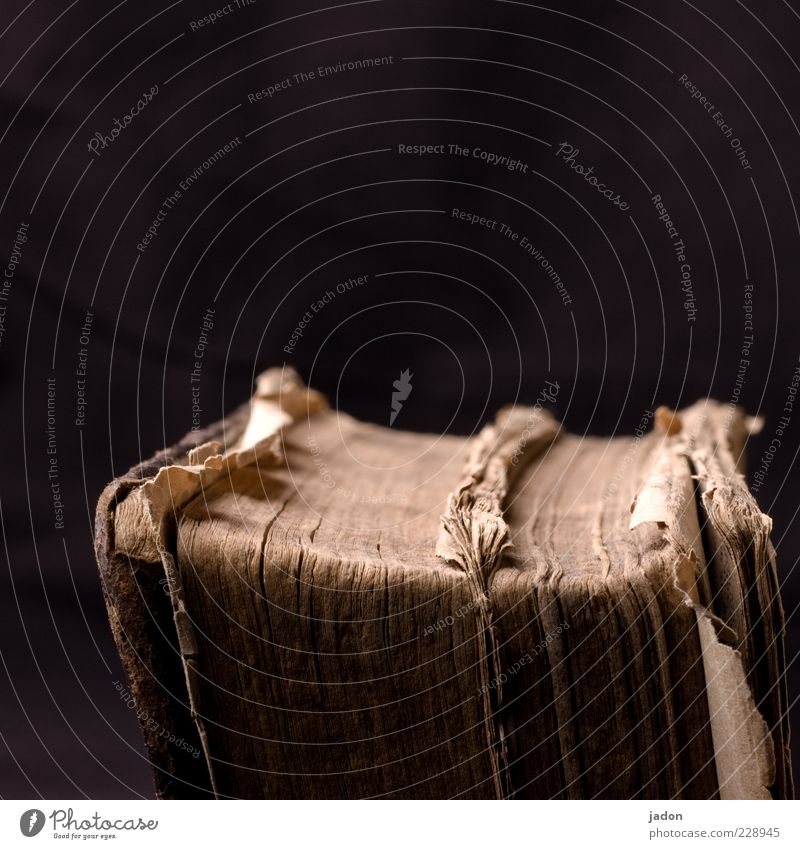 altes buch. Bildung Wissenschaften lernen Papier Leder dick Buchseite historisch gebraucht Menschenleer 1 braun staubig Bucheinband Innenaufnahme Studioaufnahme