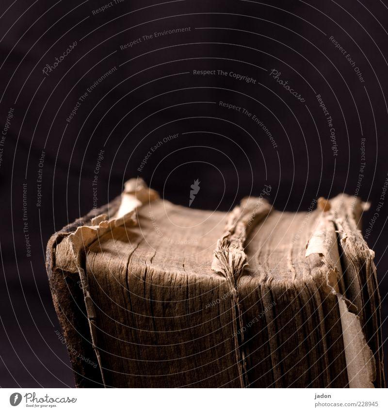altes buch. braun Buch lernen Papier historisch Bildung Wissenschaften dick Leder Buchseite gebraucht Bucheinband staubig Material
