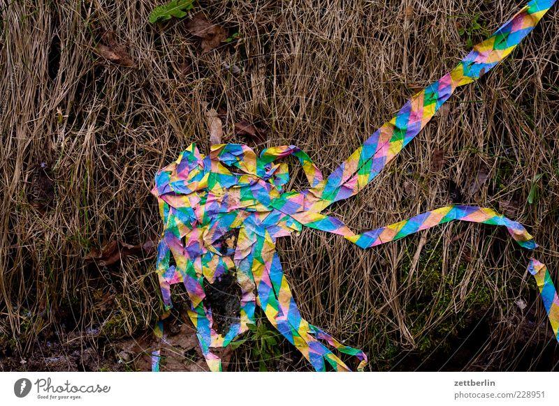 Aschermittwoch Natur alt Pflanze Wiese Gras liegen Papier Streifen Sträucher Dekoration & Verzierung Ende Konfetti Luftschlangen
