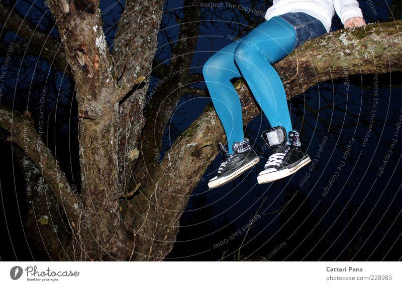 oben bleiben Mensch Jugendliche blau Baum Pflanze feminin Junge Frau Beine Schuhe sitzen warten festhalten Baumstamm Strumpfhose Turnschuh Anschnitt