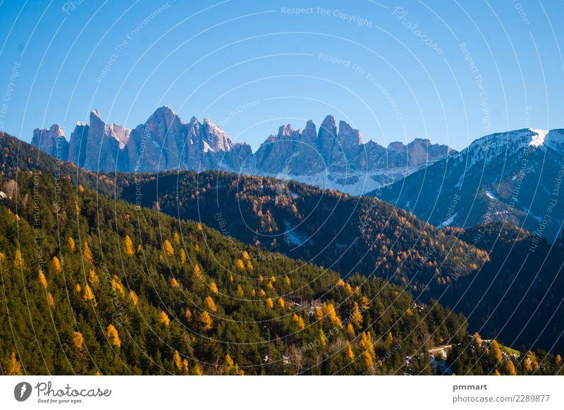 Berg im Frühling mit grünen Wäldern und dem letzten Schnee Himmel Natur Ferien & Urlaub & Reisen blau schön Landschaft weiß Sonne Baum ruhig Winter Wald