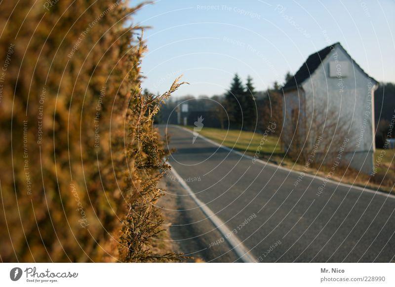 Auf halber Strecke Umwelt Herbst Pflanze Sträucher Dorf Stadtrand Hütte Straßenverkehr Wege & Pfade Idylle Mobilität Landstraße Hecke unterwegs Straßenrand