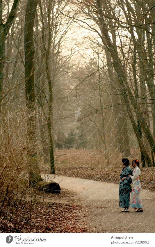 ::11-6:: Mensch Frau schön Baum Erholung ruhig Wald Erwachsene Frühling Wege & Pfade Glück träumen Kraft Zufriedenheit Sträucher wandern