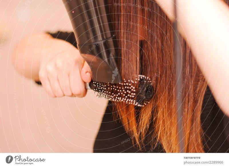 Frau trocknete ihr Haar mit Pinsel und Fön Lifestyle elegant schön Haare & Frisuren Behandlung Arbeit & Erwerbstätigkeit Werkzeug Mensch Erwachsene Hand Mode