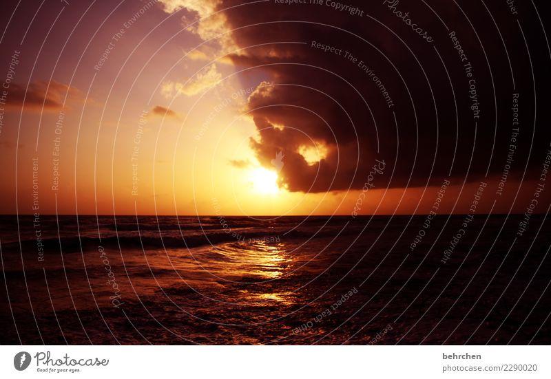 bämm...aufwachen!! Himmel Natur Ferien & Urlaub & Reisen schön Wasser Sonne Meer Wolken Ferne Strand Küste Tourismus Freiheit Ausflug Horizont träumen