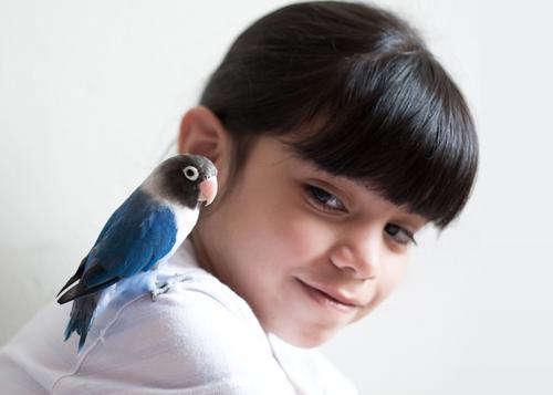 Hey little buddy! Mensch Kind Jugendliche blau schön Mädchen Freude Tier schwarz Kopf Freundschaft Vogel Kindheit Zusammensein rosa sitzen