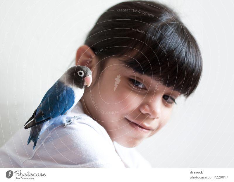 Mensch Kind Jugendliche blau schön Mädchen Freude Tier schwarz Kopf Freundschaft Vogel Kindheit Zusammensein rosa sitzen